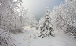 Община Провадия е подготвена за зимния сезон