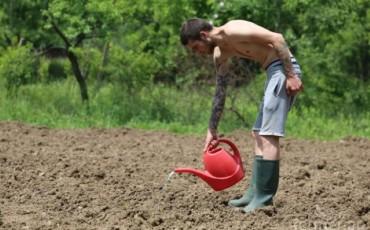 земеделие (Small)