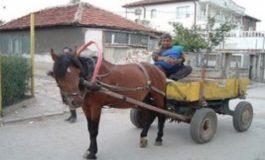 Деян Иванов, кмет на Белослав: 68 каруци са регистрирани на територията на общината