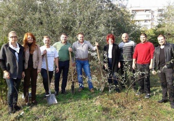 Младежи от ГЕРБ боядисаха пейки и засадиха дръвчета и храсти в Девня