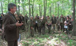 Лесовъди: Горските пояси увеличават добивите от нивите до 30%