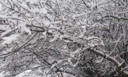 14 литра на квадратен метър са падналите валежи от дъжд и сняг в Дългопол