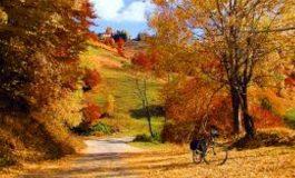 Инж. Емурла Емурла, зам.-кмет на Община Дългопол: Общината има готовност да посрещне есенно-зимния сезон