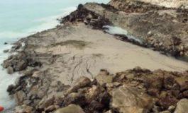 """Пътят """"Златни пясъци"""" - Кранево е застрашен"""