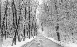 Отвориха пътя Вълчи дол - Суворово