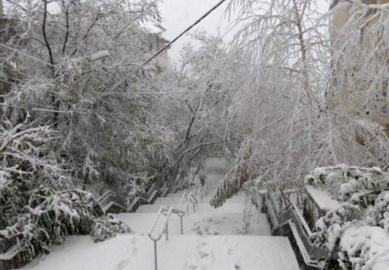 Частично бедствено положение е обявено на територията на община Долни чифлик