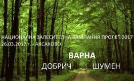 Засаждат 2 000 дървета във Варна, Добрич и Шумен