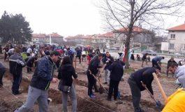 2000 фиданки засадиха край Аксаково в изборния ден