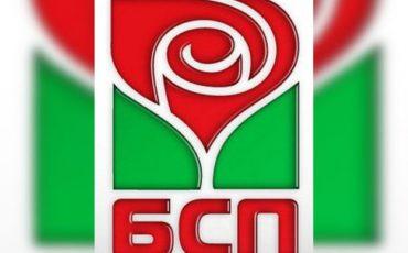 bsp_logo (Small)
