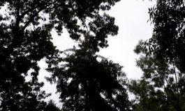 """""""…безхаберието на Провадийската община…"""""""