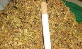 Иззеха половин тон тютюн без бандерол от фургон в авренска нива