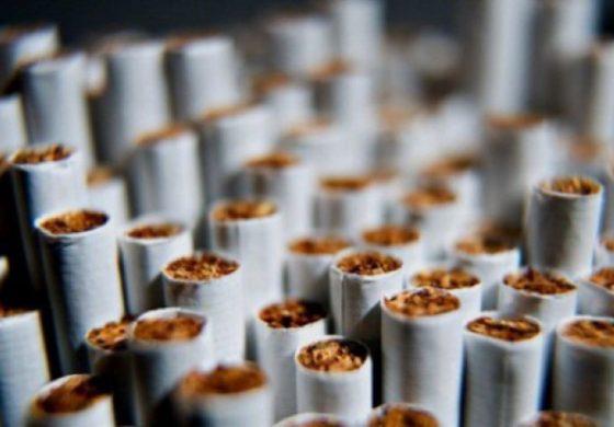 Иззеха близо 40 хил. къса контрабандни цигари при спецакция край Варна
