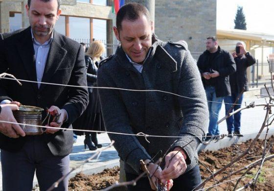 Двоен ръст на износа на български вина за Китай