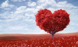 Какво е любовта?
