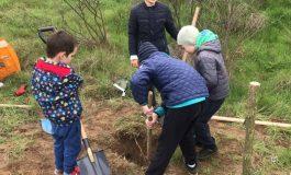Над 200 доброволци се включиха в залесяването на нова гора край Варна