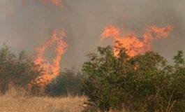 Само за ден гасиха два горски пожара край Суворово
