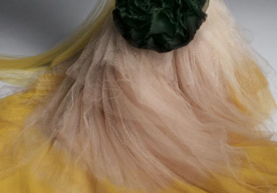 Как Vera Wang промени представите за булчинска рокля