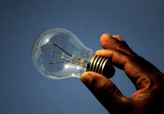Могат ли светещите растения да заменят електрическите крушки вкъщи?