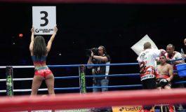 """15 битки за първото издание на """"Боксов сблъсък"""""""