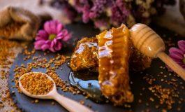 Пчелен прашец - златни гранулки за здраве
