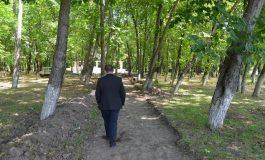 Новите алеи в централния парк на Девня ще бъдат с паважна настилка