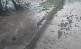 Частично бедствено положение обявиха в община Дългопол