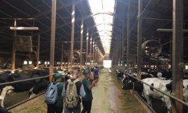 20 ученици от Провадия проведоха практика в немски органични ферми
