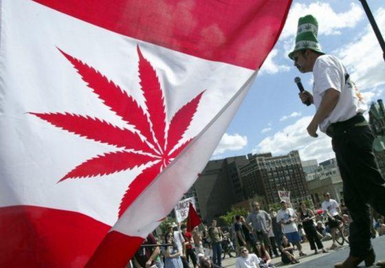 """""""Сух режим"""" – Канада свърши канабиса само няколко седмици след легализацията"""