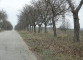 Община Ветрино се подготвя за зимата