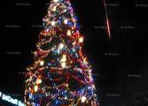 Запалиха светлините на коледната елха в град Долни чифлик