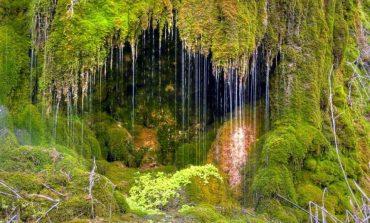Водопадът до село Невша