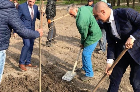 Цветан Цветанов участва в залесителна инициатива в Девня