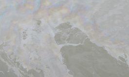 Екоинспекцията откри петна от мазут на плажа в Шкорпиловци