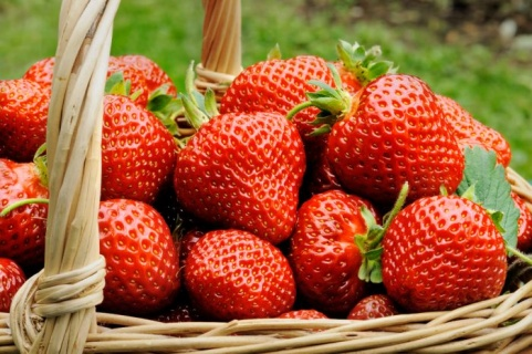 Ягодите – свежа доза антиоксиданти за пролетта
