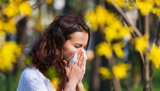 Как да преборим пролетните алергии с билки?