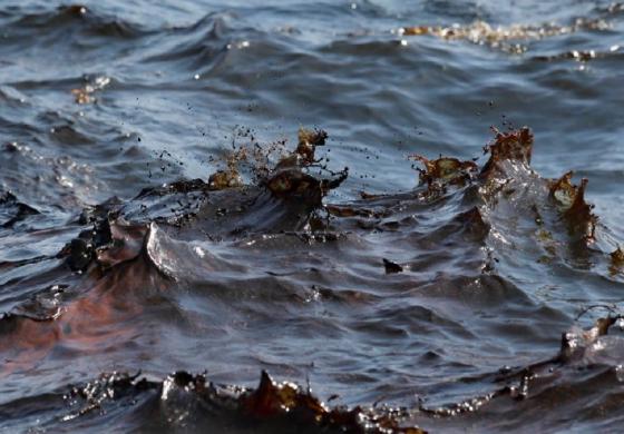 Замърсяването с нефт на плажа в Шкорпиловци – с обхват около 3 км (обновена)