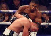 Хърн: Джошуа може да се бие с Пулев през декември