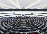 'Прозрачност без граници': За какво да внимаваме в изборния ден