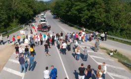 Свиневъди от Долни Чифлик блокираха пътя Варна - Бургас