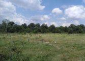 НАП продава земеделски земи в Аврен и Аксаково