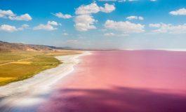 Езерото Туз се оцвети в розово