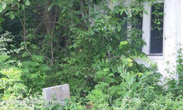 Гробищата в Провадия – решение от общината, доброволци или подаяние от бизнеса