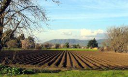 По-добра защита срещу измами и срок за получаване на рента предвижда новият закон за земята