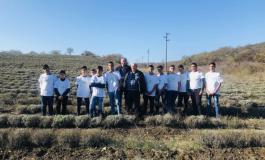 """Ученици от ПГСС-Долни чифлик посетиха лавандулово стопанство по кампанията """"Супер фермер"""""""