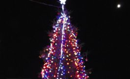 Грейна красива коледна елха в Долни чифлик (снимки)