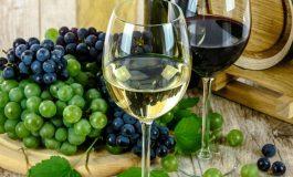 Община Белослав организира Празник на виното и веселието за Трифоновден на 1 февруари