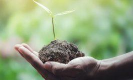 Три европейски програми за зелени предприемачи за 2020 г. са отворени за кандидатстване