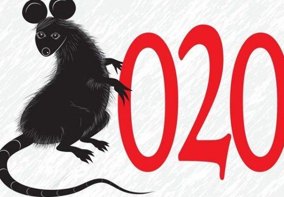 Коронавирусът – възможността на Китай да превземе Европа