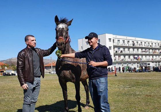 По традиция Община Девня организира още един вълнуващ Тодоровден (галерия)