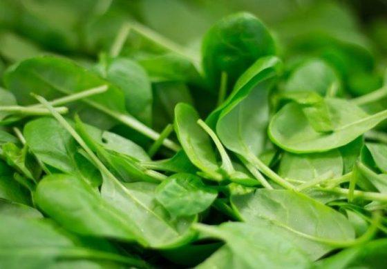 Храните, които предпазват от дихателни заболявания